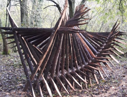 News: Member involved with Sculpture at Warnham Nature reserve