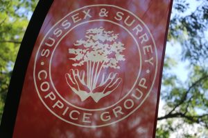 Sussex and Surrey Coppice group flag