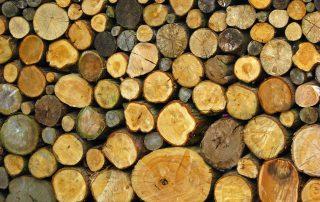 Moisture in logs SSCG